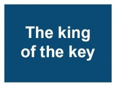 https://centrecommercialcarrefour.fr/wp-content/uploads/sites/32/2014/11/logo-carrefour-the-king-of-the-key-232x174.jpg