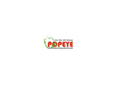 https://centrecommercialcarrefour.fr/wp-content/uploads/sites/4/2014/03/logo-carrefour-popeye-232x174.png